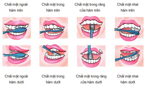 Kỹ thuật chải răng đúng cách để răng được bảo vệ ,chăm sóc tốt nhất
