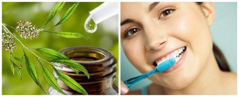 TOP 6 cách chữa sâu răng hôi miệng tại nhà Vĩnh Viễn từ Dân gian 2