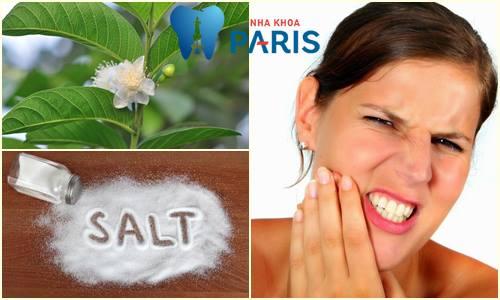 Chữa đau răng bằng lá ổi - 3 Cách thực hiện ĐƠN GIẢN ít người biết 3